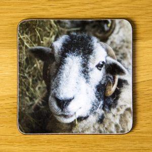 """""""Om Nom"""" Sheep Coaster dc0011-3311"""