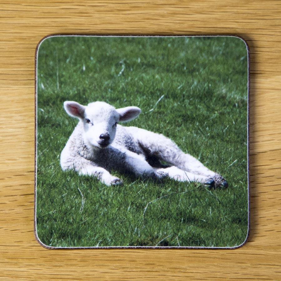 Reclining Lamb Coaster dc0012-3302