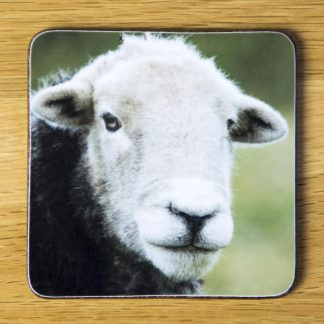 "Herdwick Sheep Coaster ""Ian"" dc0019-3315"