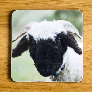 "Vallais Black Nose Sheep ""Little George"" Coaster dc0021-3296"