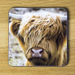 "Highland Cow ""Frings"" Coaster dc0001-3313"