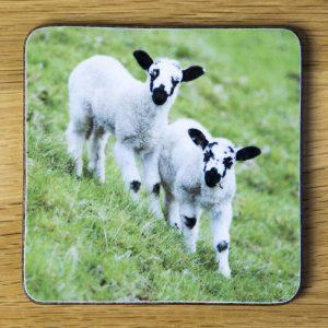 Two Lambs Coaster dc0016-3312