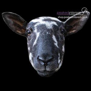 Gritsone Sheep, Mule Portrait