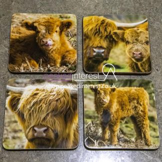 Highland Cow Coaster Set