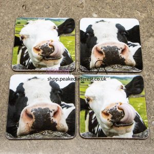 Highland Cow Coaster Set DC9002