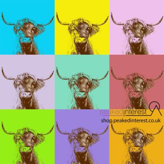 Pop Art Highland Cow PIctures
